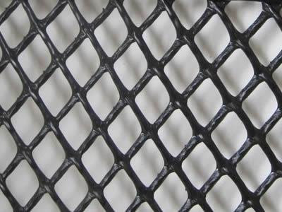 A piece of diamond oyster mesh on the white background.